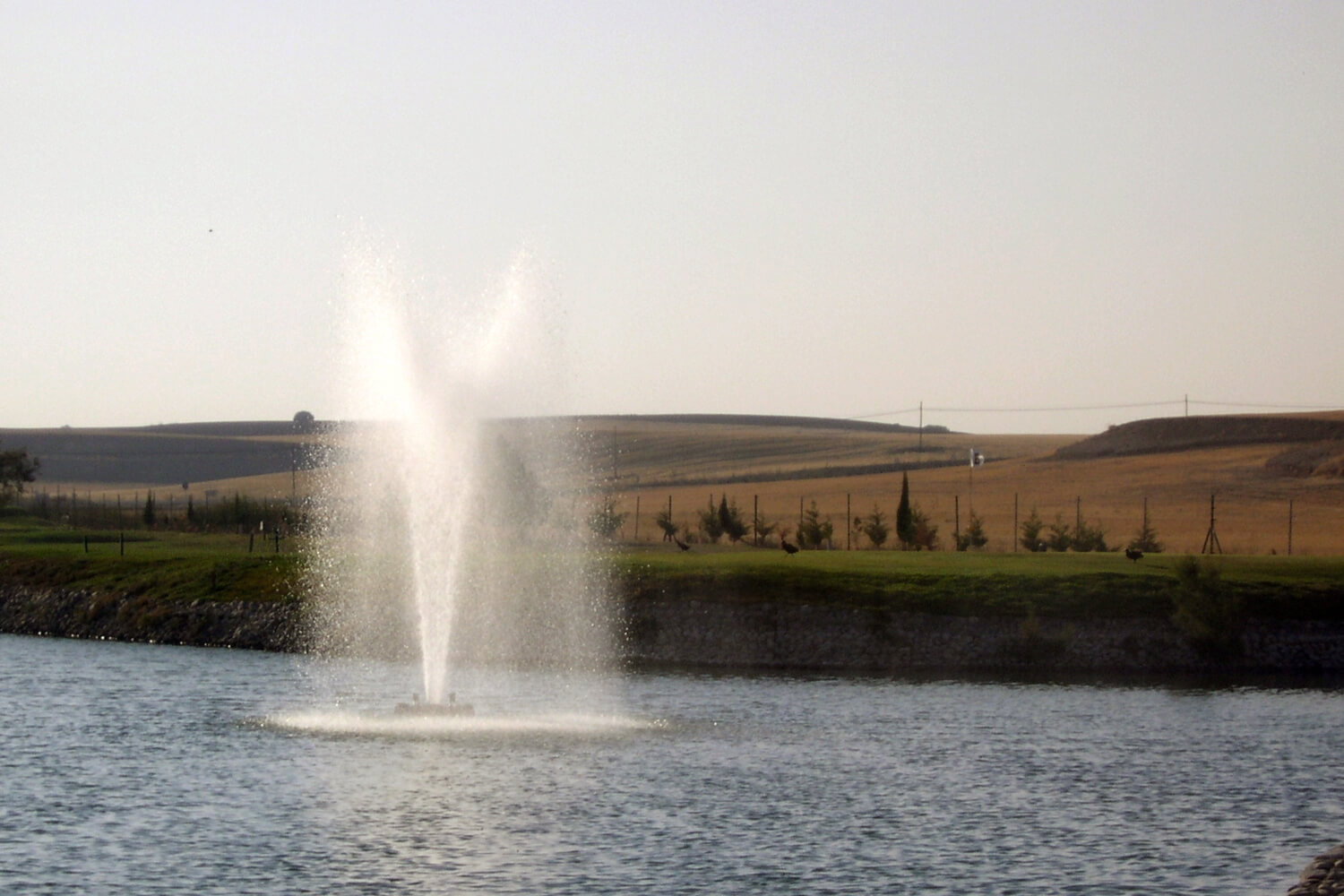 One of Otterbine's Rocket Aerating Geyser Fountains