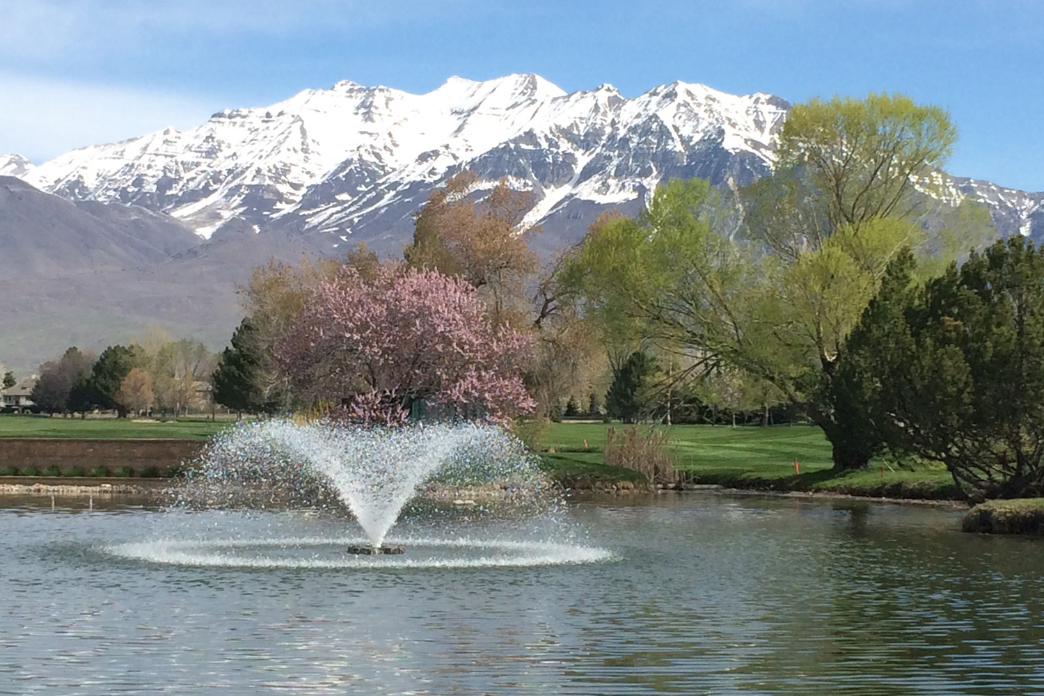 One of Otterbine's Sunburst Aerating Fountains in a beautiful park
