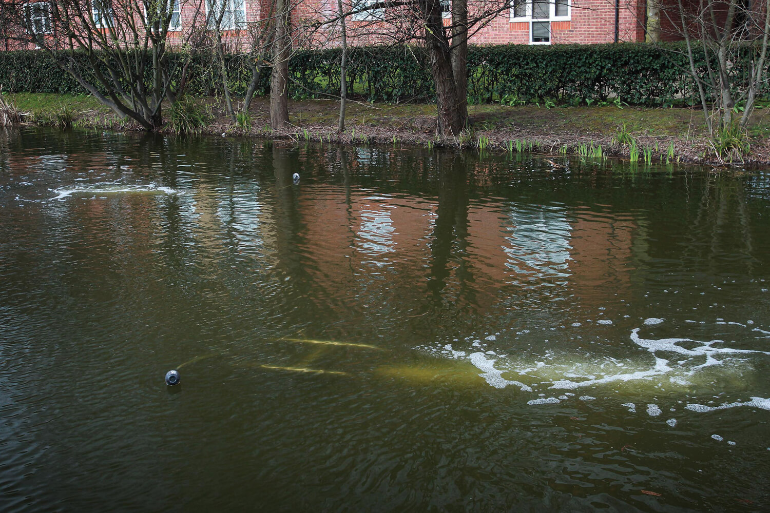 A shot of water before and after an aerator's installation