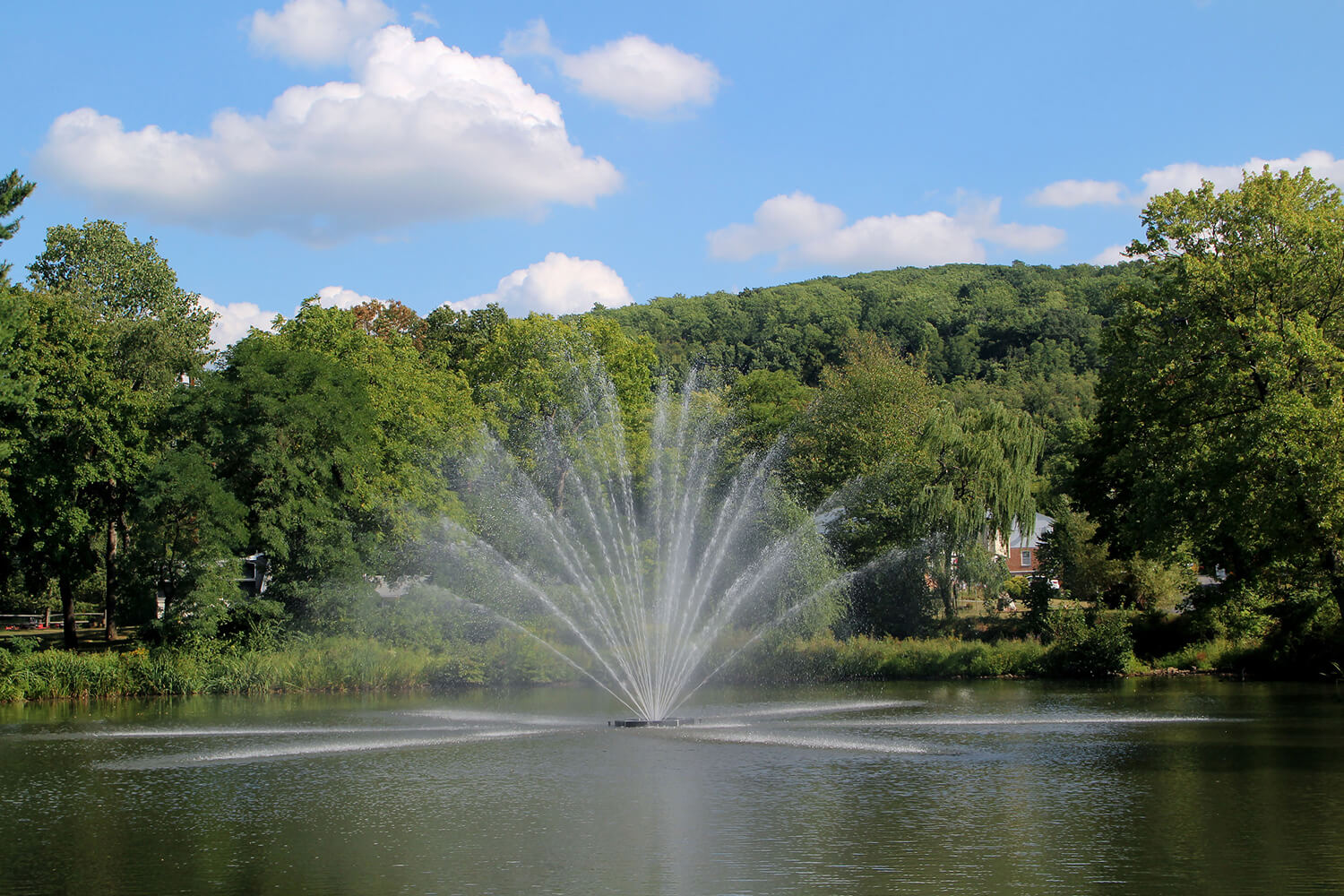 One of Otterbine's Equinox Aerating Fountains in a residential area