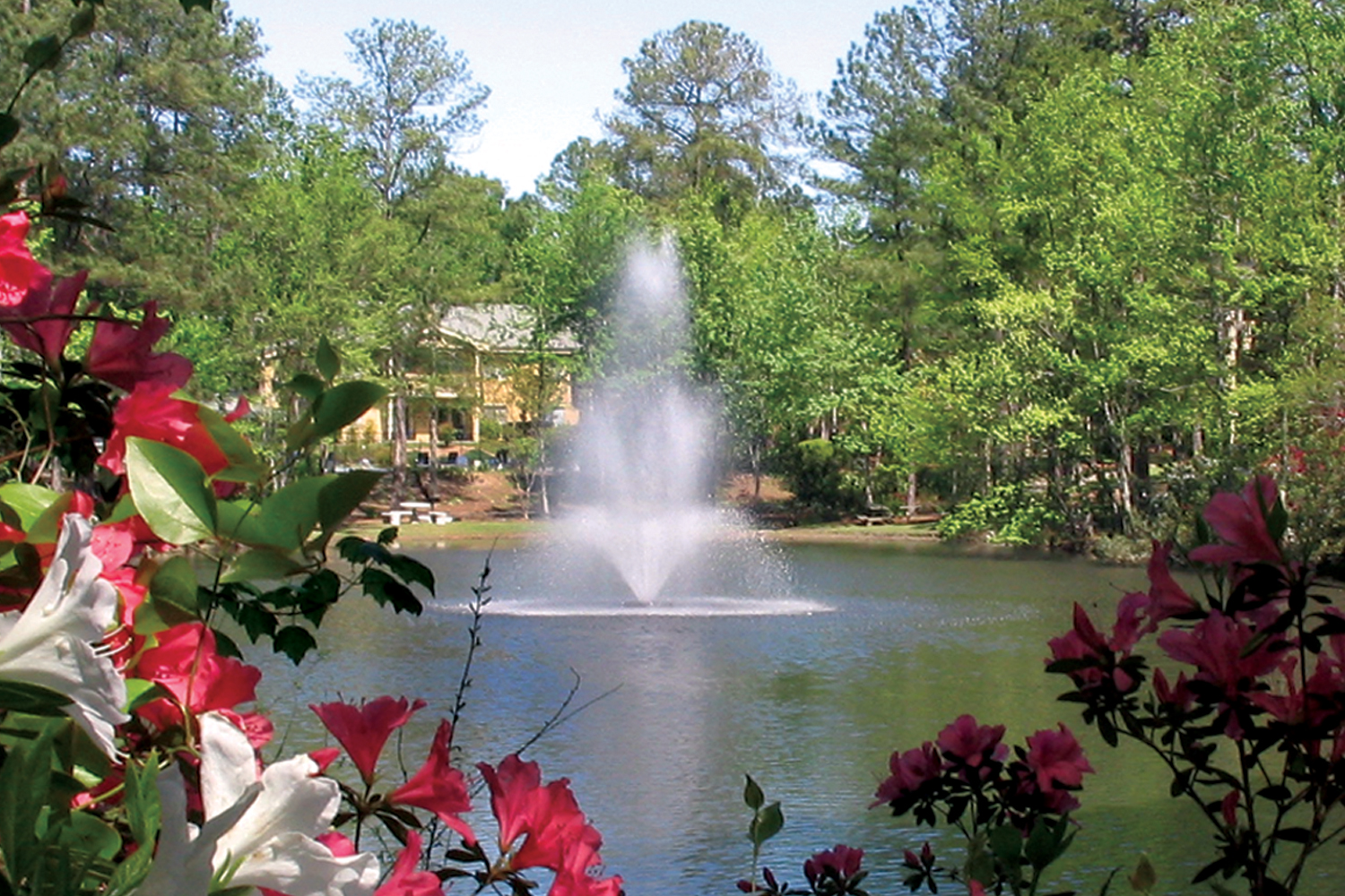 One of Otterbine's Residential Aerating Fountains