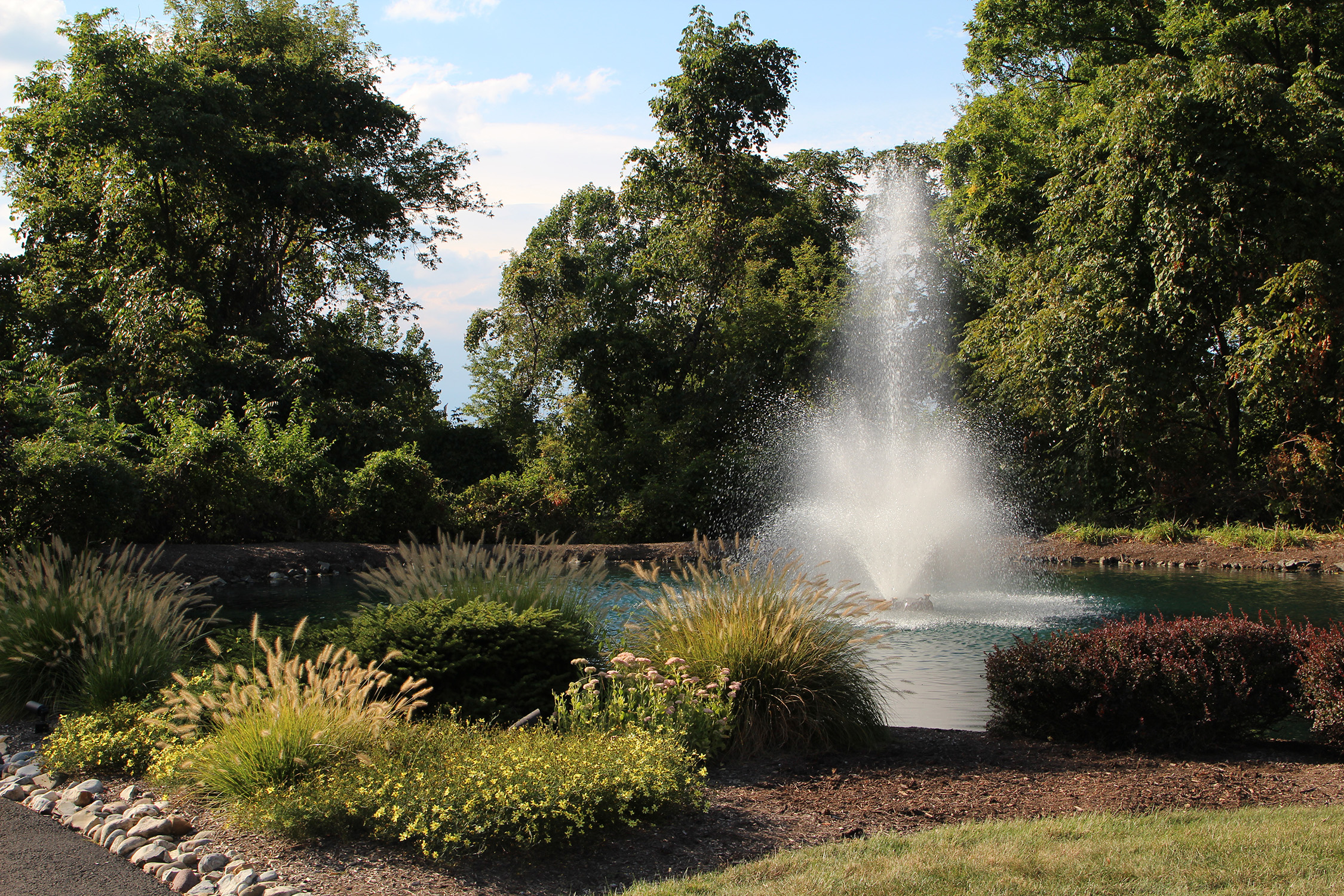 One of Otterbine's Aerating Fountains in a beautiful park